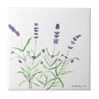 Copie botanique d'herbe de lavande petit carreau carré