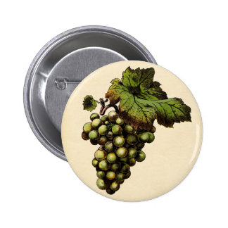 Copie botanique - raisin blanc badges