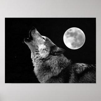 Copie d'affiche de loup gris et de lune poster
