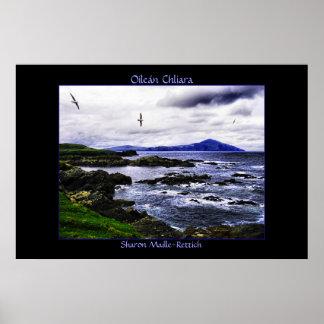 Copie d'affiche d'oiseaux d'île de Clare