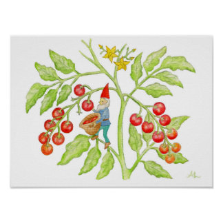 Copie d'art de gnome de tomate-cerise posters