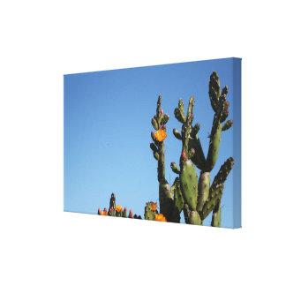 Copie de floraison de toile étirée par plante de