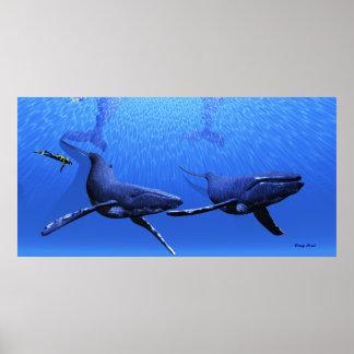 Copie de la baleine 01 posters