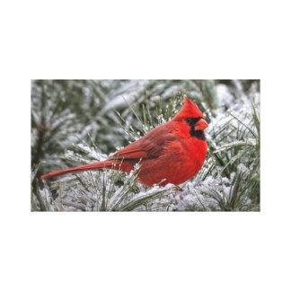 copie de la toile 12 X12 le cardinal rouge