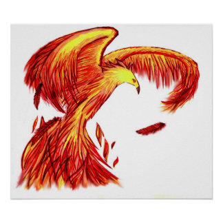 Copie de Phoenix Poster