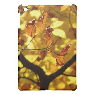 Copie de photo de feuille d'automne étuis iPad mini
