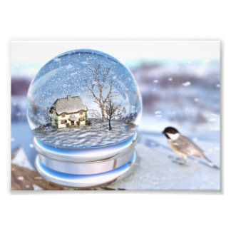 Copie de photo de globe de flocon de neige