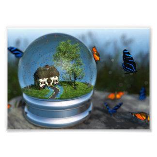 Copie de photo de globe de papillon