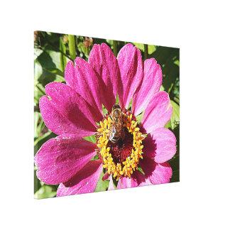 Copie de toile - abeille dans le rose toiles