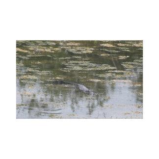 Copie de toile d'alligator