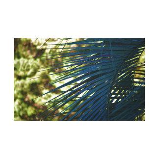 Copie de toile de branche de paume de couleur