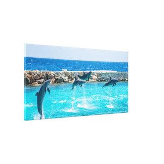 Copie de toile de dauphin
