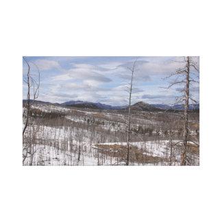Copie de toile de forêt de Pike