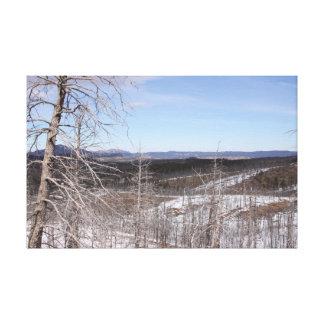 Copie de toile de la forêt de Pike