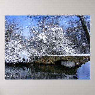 Copie de toile de pont de neige posters