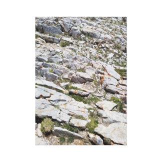 Copie de toile de roche