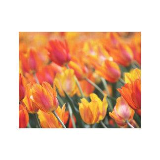 Copie de toile de tulipes