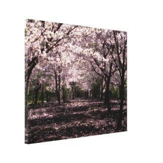 copie de toile enveloppée par fleurs de cerisier