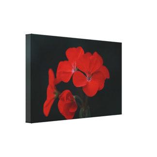 Copie de toile étirée par fleurs rouges