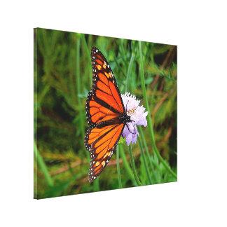 Copie de toile - fleur de papillon toiles