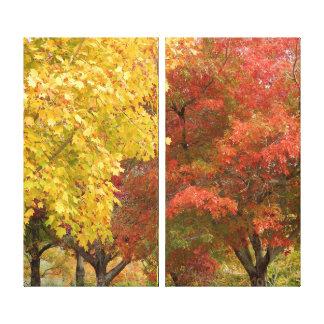 Copie de toile - gloire d'automne toiles