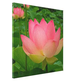 Copie de toile - Lotus sacré Toiles