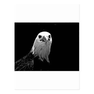 Copie d'Egle Cartes Postales