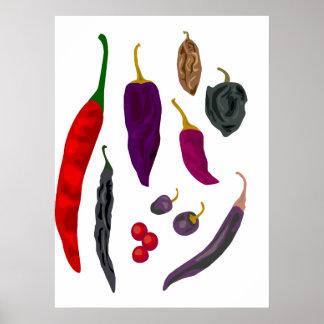 Copie d'épice de piments poster