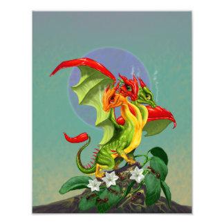 Copie du dragon 11x14 de poivrons impression photo