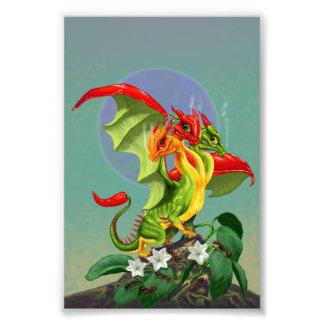 Copie du dragon 4x6 de poivrons impression photo
