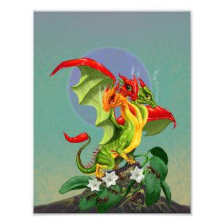 Copie du dragon 8.5x11 de poivrons impression photo