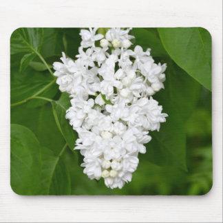 Copie lilas de fleurs de ressort blanc tapis de souris