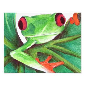 copie mignonne de grenouille photo d'art