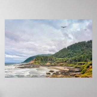 Copie : Mouettes volant le long de la côte Poster