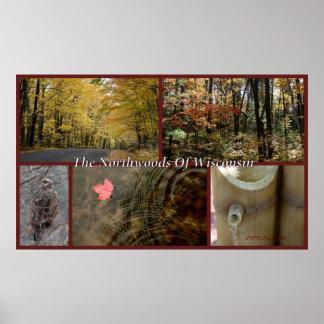 Copie Northwoods le Wisconsin de collage de nature Posters