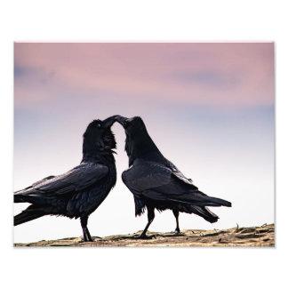 Copie parlante de photo de Raven