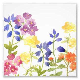 Copie pour aquarelle colorée de photo de fleurs
