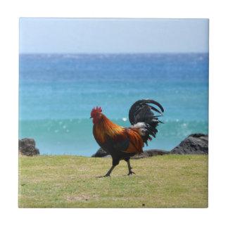 Coq de Kauai Petit Carreau Carré
