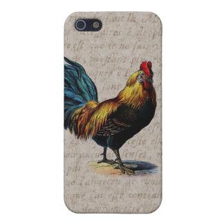 Coq vintage sur le parchemin antique - coqs étui iPhone 5