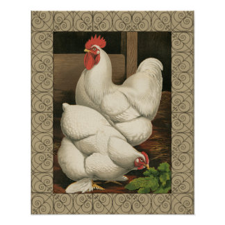 Coqs et poule en dehors de Chambre de poule avec Posters