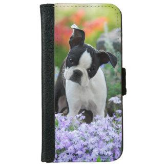 Coque Avec Portefeuille Pour iPhone 6 Chiot mignon de chien de Boston Terrier,