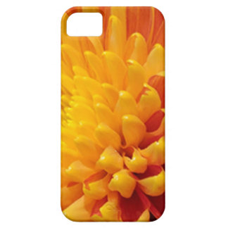 Coque Barely There iPhone 5 Chrysanthème jaune et orange
