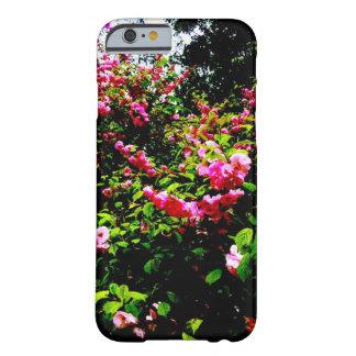 Coque Barely There iPhone 6 Cas vibrant de téléphone de rosier