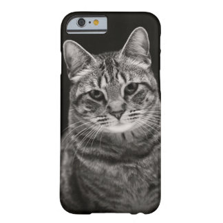 Coque Barely There iPhone 6 Chaton tigré noir