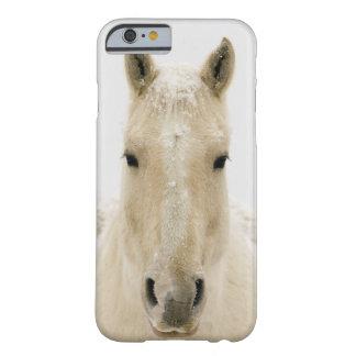 Coque Barely There iPhone 6 Cheval avec la neige sur la tête