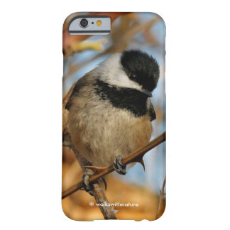 Coque Barely There iPhone 6 Chickadee Noir-Couvert affamé plein d'espoir