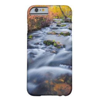 Coque Barely There iPhone 6 Chute le long de crique de Lundy, la Californie