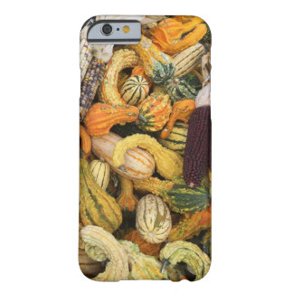 Coque Barely There iPhone 6 Courge, courge partout