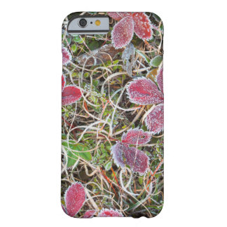 Coque Barely There iPhone 6 Frost a couvert le feuille, Canada