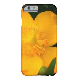 Coque Barely There iPhone 6 iPhone/coque ipad jaunes de fleur